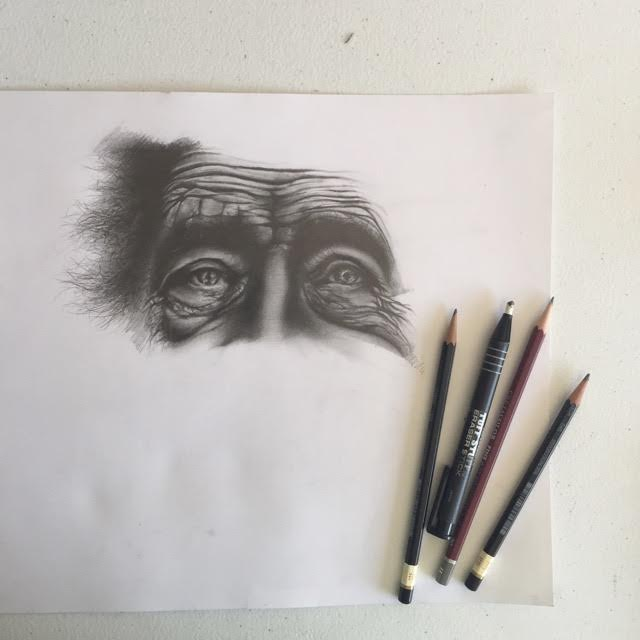 Elderly Eye Study