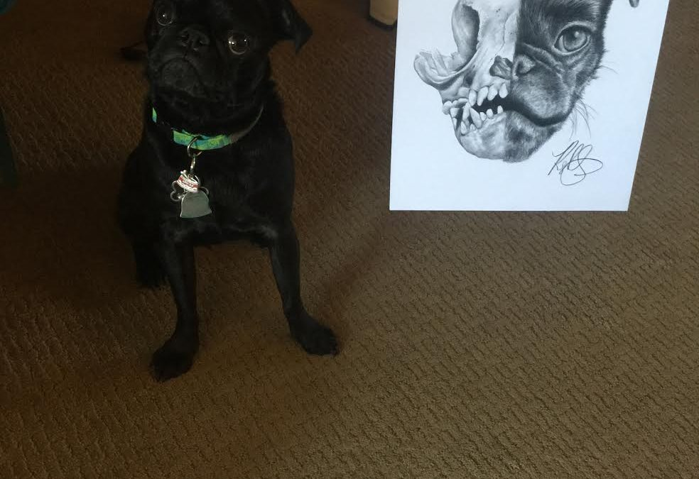 DOG PORTRAIT APPROVED BY THIS LITTLE MAN